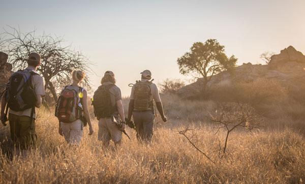 Abenteuerliche Natur- und Rangerkurse
